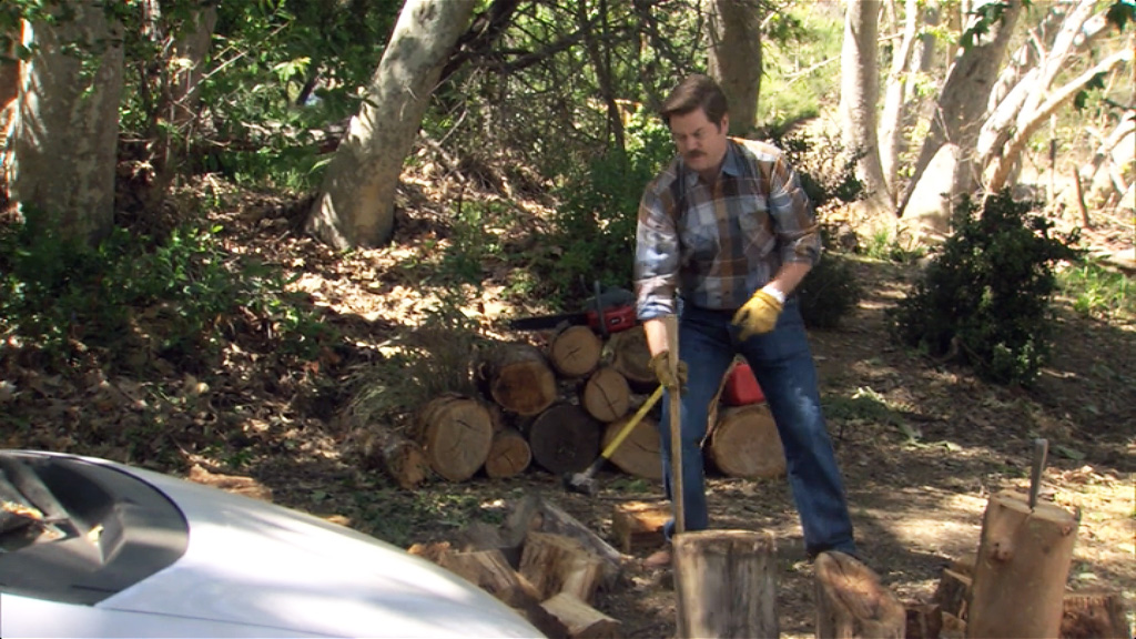Ron Swanson chopping some wood