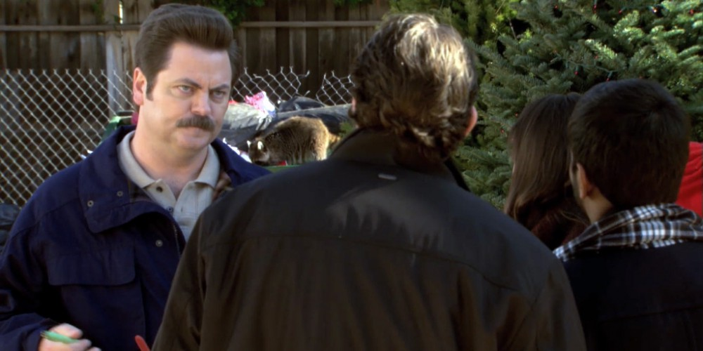 Raccoons in the dumpster behind Ron Swanson Swanson.