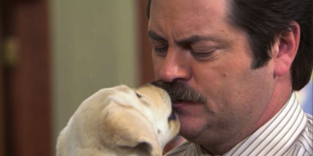 Ron Swanson and a puppy picture 4