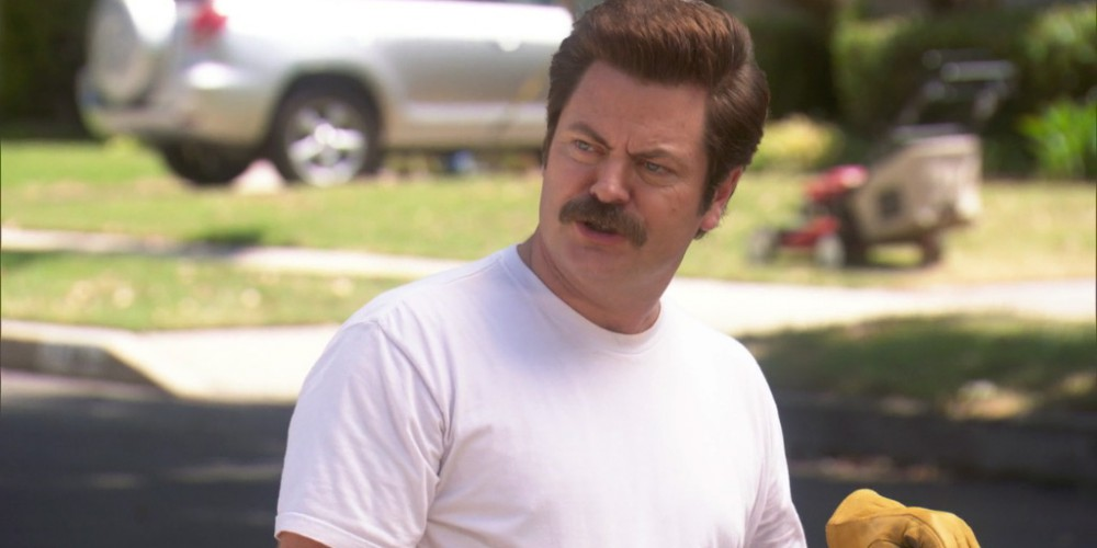 Ron Swanson the Princess picture1