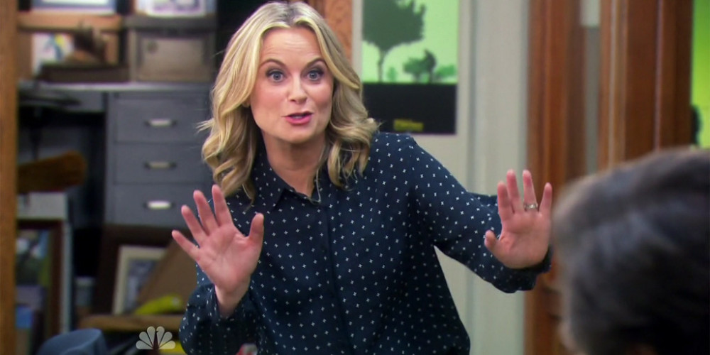 Leslie Knope We Didn't Start the Fire picture1
