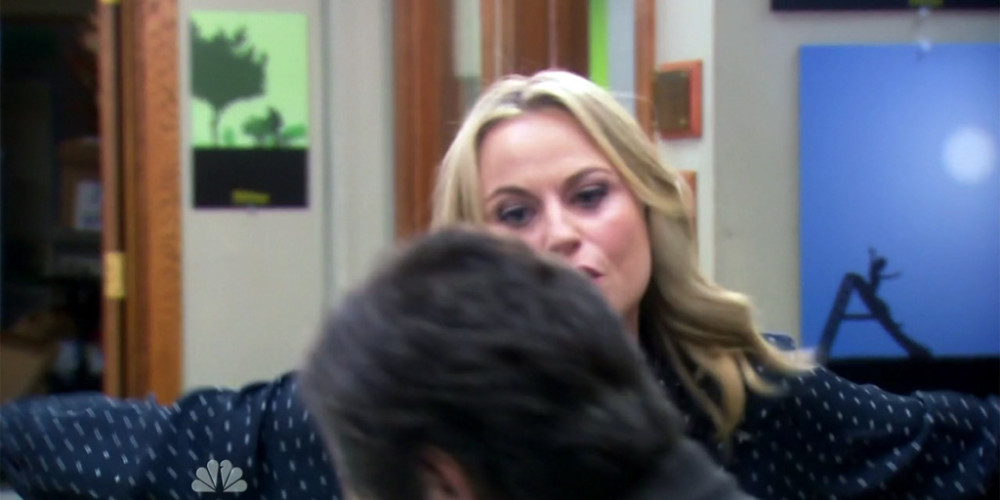 Leslie Knope We Didn't Start the Fire picture12