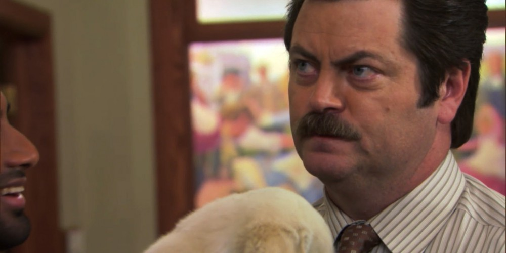 Ron Swanson and a puppy picture 7